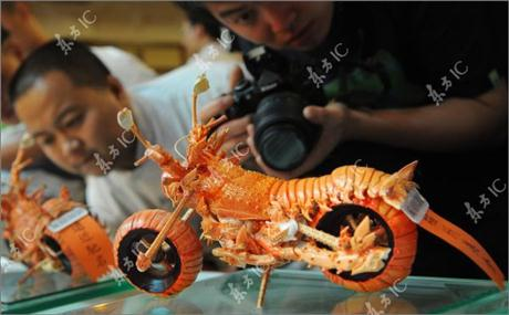 Lobster Shells Motorcycle - 03