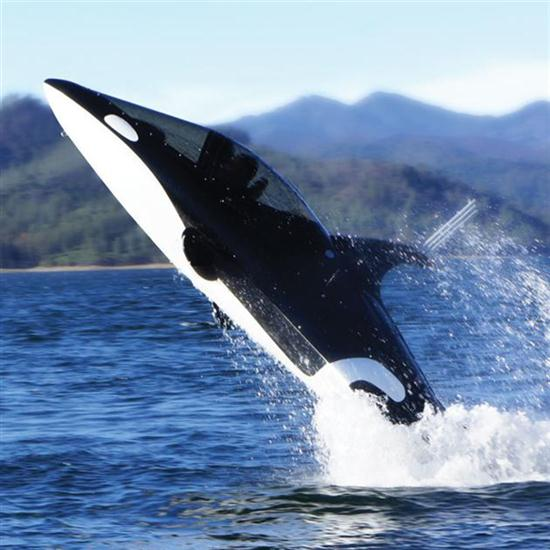 Two-Person Killer Whale Submarine - 01