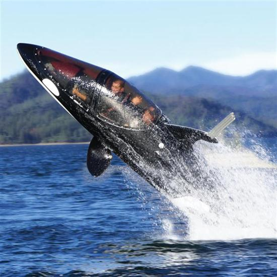 Two-Person Killer Whale Submarine
